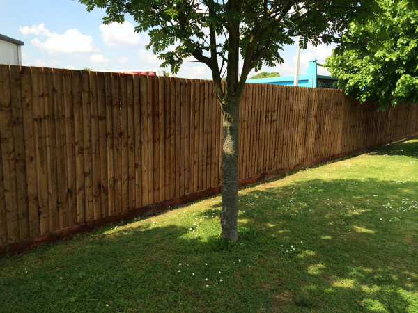 close board fencing in sheffield